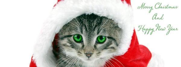 {#merry_christmas_happy_new_year.jpg}